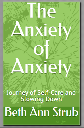 anxiety of anxiety book by Beth Ann Sturb